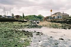 Low Tide (Chi Bellami) Tags: sea colour film beach 35mm coast nikon scan negative luck isleofwight scanned fujifilm lowtide nikonos c200 gurnard c41 nikonosv scalefocus amphibiouscamera zonefocus chibellami photohippo