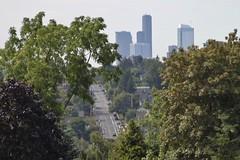 Seattle skyline from NE 80th Street (SounderBruce) Tags: road seattle trees skyline hill overpass unionsquare seattlemunicipaltower skysrapers columbiacenter