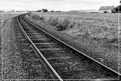 "Ancient tracks <a style=""margin-left:10px; font-size:0.8em;"" href=""http://www.flickr.com/photos/66444177@N04/19828316405/"" target=""_blank"">@flickr</a>"