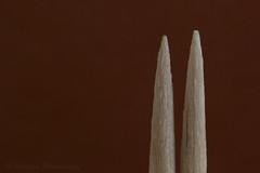 Toothpicks (Akhyâna) Tags: toothpicks