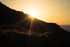 CLIMBING UP TO THE SUN (Fo†om∆†σm [¯Ô¯]) Tags: ilce7m2 sony a7ii cotevermeille pyreneesorientales capbear cape bear capebear nature naturallight dawn lowlight sunset sun fotomatom where landscape what 66