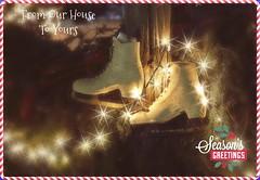 Slider Sunday: Merry Christmas (Sue90ca 50 Degrees And Maybe Some Sun :)) Tags: slidersunday merry christmas