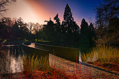 "The Sackler Crossing (MrBlueSky*) Tags: bridge water lake landscape sacklercrossing kewgardens nature outdoor london pentax pentaxk1 pentaxart pentaxlife aficionados trees travel"" sunrise"