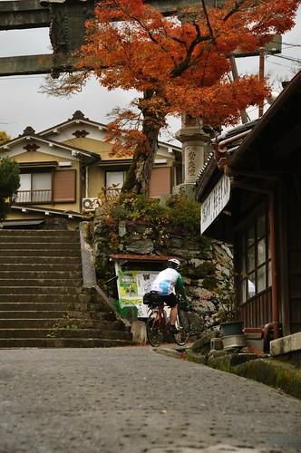 20101123-090340-koyasan-chee