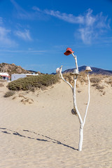 IMG_7554.jpg (Dominik Wittig) Tags: september2016 holidays naxos kykladen plaka strand urlaub meer sea beach greece 2016 griechenland september cyclades