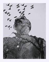 "MetaMoRpHoSiS (QuietWalker ""crisis on Mars"") Tags: metamorphosis metamorfosis blackwhite blancoynegro autumn trees tree cardiography cardio cardiografía textura texture lostwalker birds me eyephoneography phoneography polaroids polaroid 2016 2017 winter sonyxperiat sonylt30p sony noseporquehiceesto selfportrait"