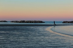 2017-01-03_03-16-58 (andrea.suzzi1985) Tags: sea sunset magic italia italy emiliaromagna rimini bellaria canon canon1200d dog friends colori color mare reflex reflaction love fotografia foto
