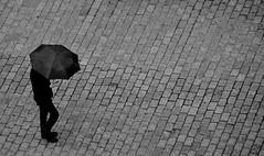 Always connected (Daniele Salutari) Tags: photo photography shot wow amazing cool great good dannyboy ilovedannyboy daniele krakow poland black white street umbrella people rain dark travel trip