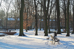 cold day... :) (green_lover) Tags: winter snow park trees benches żyrardów poland seasons