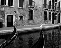 Veneto (dellewicki) Tags: venice gondolas