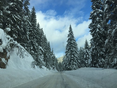 Sucha beauty👌👌👌 Cold Temperature The Road Ahead Driving On The Road Snow Mountain Tree Winter Nature Weather Scenics Tranquility Beauty In Nature The Way Forward Tranquil Scene Road Sky No People Day Outdoors Landscape Cold Big Tre