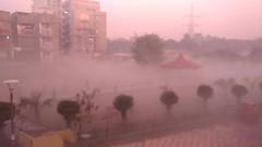 Foggy Delhi morning