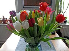 Frühling (onnola) Tags: berlin deutschland germany blumen blumenstraus tulpen frühling sping tulips bouquet flowers blüten blossoms tisch table