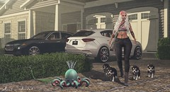 A friend is someone who is there for you when he'd rather be somewhere else... (Neda Andel ~SLooK4U Blog) Tags: uber billionaire car husky truth friend dog puppy essenz mesh secondlife virtual fashion blog blogger slook4u neda nedaandel tattoo cae