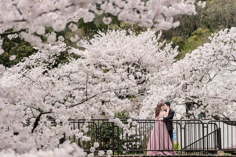 日本婚紗,京都婚紗,櫻花婚紗,新祕藝紋,cheri wedding,cheri婚紗,婚攝,cheri婚紗包套,海外婚紗,DSC_0016