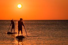 D0991E7 - Roatan Paddle Boarding at Sunset (Bob f1.4) Tags: sunset sea sky orange water outdoors island board paddle honduras calm caribbean roatan