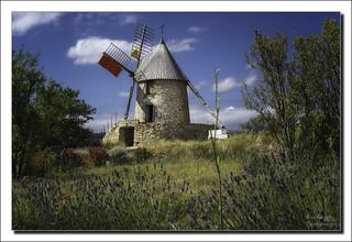 Moulin a vente