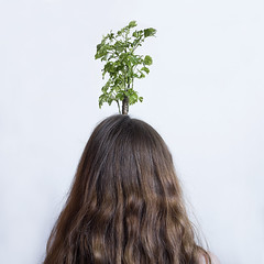 J221/365 - Une part d'oxygène (clementine.gras) Tags: tree autoportrait air breath 365 arbre futur oxygène respirer
