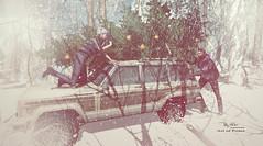"""Most popular problem these days: getting your xmas tree home."" :D (Roy Mildor CEO of RM ~Art of poses ~) Tags: xmas winter snow roymildor rmartofposes merryxmas pose photography card fun"