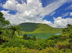 Green Lake (terri-t) Tags: green lake rotorua nz aotearoa newzealand nature water landscape clouds palms lush rotokakahi