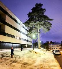 Ståhlbergintie 3 (neppanen) Tags: sampen discounterintelligence helsinginkilometritehdas helsinki suomi finland päiväno96 reittino96 päivä96 reitti96 rakennus talo house building kulosaari ståhlbergintie ståhlbergintie3 kortteli42047