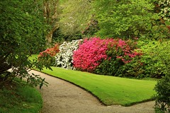 Gardens at Lanhydrock (Eddie Crutchley) Tags: europe england outdoor cornwall lanhydrock nationaltrust statelyhome mansion gardens simplysuperb