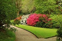 Photo of Gardens at Lanhydrock