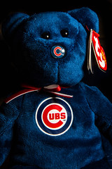 ty beanie babie cubs (timp37) Tags: chicago illinois cubs december 2016 baseball toy ty beanie babie stuffed animal
