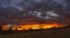 That Feeling I Get When I Look to the West (RobertCross1 (off and on)) Tags: ca california la ledzeppelin losangeles socal sony sonydschx9v southerncalifornia stairwaytoheaven atardecer clouds landscape panorama pointandshoot puestadelsol sunset trees