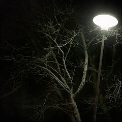 Photosensitive (Samuel Poromaa) Tags: urban night winter squarephotography samuelporomaa poromaa