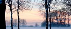 Winter in holland (rienschrier) Tags: zeeland natuur landschap nature winter landscape