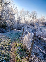Frost Trail (enneafive) Tags: trail hiking freezing frost morning nature blue sky grass