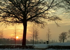 cool (BrigitteE1) Tags: cool kalt sunset sonnenuntergang bremen deutschland germany tree trees sky clouds snow winter beautiful colors landscape winterscene horizon amazing flickr light solitarytrees atmosphere winterday