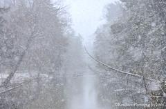 Crystal River ... shroud'd (Ken Scott) Tags: crystalriver snowing leelanau michigan usa 2017 january winter 45thparallel hdr kenscott kenscottphotography kenscottphotographycom freshwater greatlakes lakemichigan sbdnl sleepingbeardunenationallakeshore voted mostbeautifulplaceinamerica