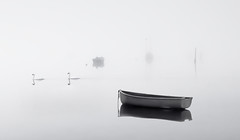 Swans in the Mist (Solent Poster) Tags: pentax emsworth harbour fog mist uk swans seascape