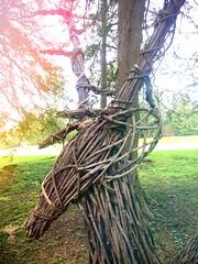 Sculptured deer. (darrenboyj) Tags: twiggy dear sculpture