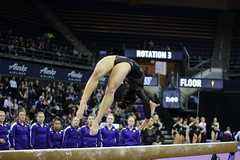 2017-02-11 UW vs ASU 94 (Susie Boyland) Tags: gymnastics uw huskies washington