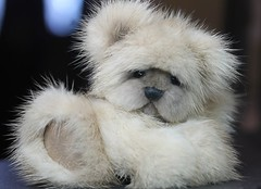 Teddy Bear Mink 3 (kimbearlyoriginal) Tags: teddy bear kimbearlys ooak artist mink