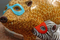 (ONE/MILLION) Tags: blue red arizona brown black color nature mask sedona flagstaff pigs tusks hogs