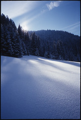 (Modular) Tags: schnee winter 15fav snow film 1025fav analog 510fav 35mm germany bayern bavaria top20winter kodak slide olympus dia modular xa rodeln ebx extracolour kodakelitechrom