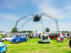 watch out! spider behind you! (Andreas Reinhold) Tags: blue blur green grass bug lens spider beetle fake tiny ghia karmann aircooled dfl tiltshift
