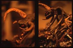 McFarlane Toys (rahen z) Tags: orange film toy olympus 40mm halfframe spawn olympuspen zuiko provia100f violator penft reversal mcfarlanetoys olympuspenft fujichromeprovia100f rdpiii  40mmf14   americantoy