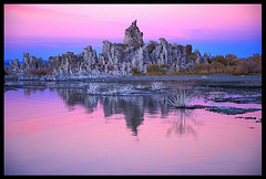 Mono Lake Colorful Evening (Buck Forester) Tags: california pink sunset lake film nature canon mono bravo velvia monolake pinksky tufa elan7 velvia50 tufas canonelan7 southtufa tufatowers monocolors monolakeevening southtufapreserve