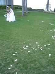(Bites N Sites) Tags: wedding scott island amy alyssa daniels amelia