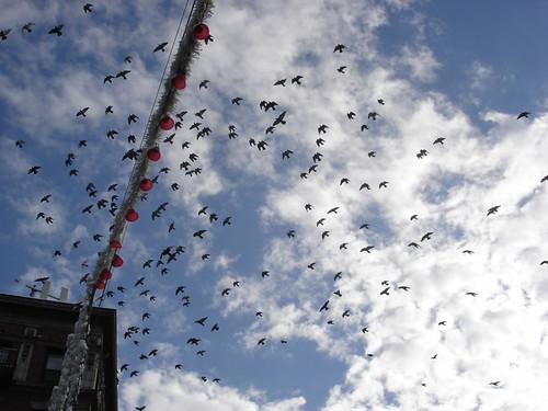 Bells and Birds