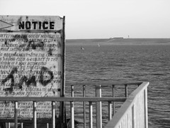 Extreme Signage (KarmicDesign) Tags: bw beach canon a610