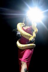 coney island snake lady (pixietart) Tags: nyc nycpb coneyisland snake live event lensflare benefit gothamist remy orangina sideshow crobar springgala snakelady cityoffire missremyvicious