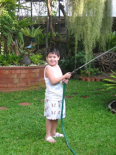 robin at lola's garden
