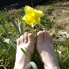 "barefootzen <a style=""margin-left:10px; font-size:0.8em;"" href=""http://www.flickr.com/photos/25671950@N00/129597316/"" target=""_blank"">@flickr</a>"
