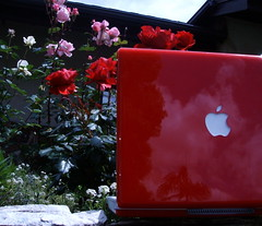 Red iBook - by Arc-light